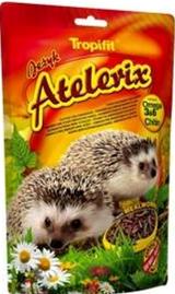 alimento erizo antofagasta